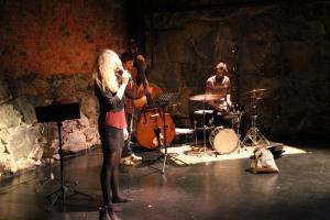 Sanna Ruohoniemi Trio Kuva Sami Tainio
